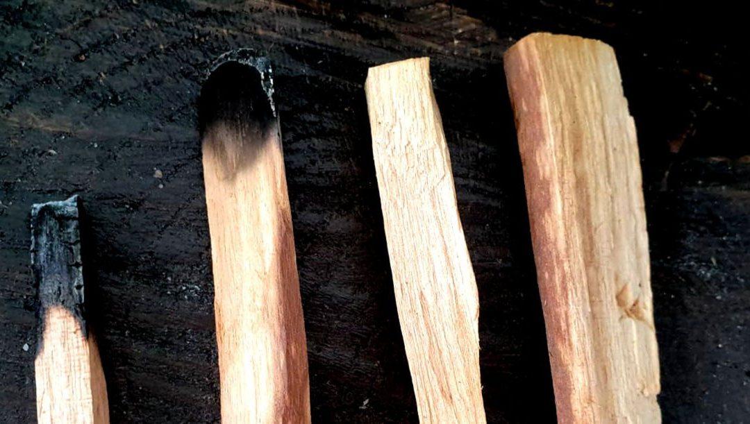 Palo santo – het heilige hout
