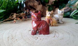 aragoniet kat